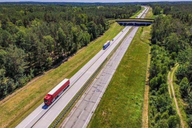 A18 dociera do Golnic. Jest przetarg na ostatni odcinek