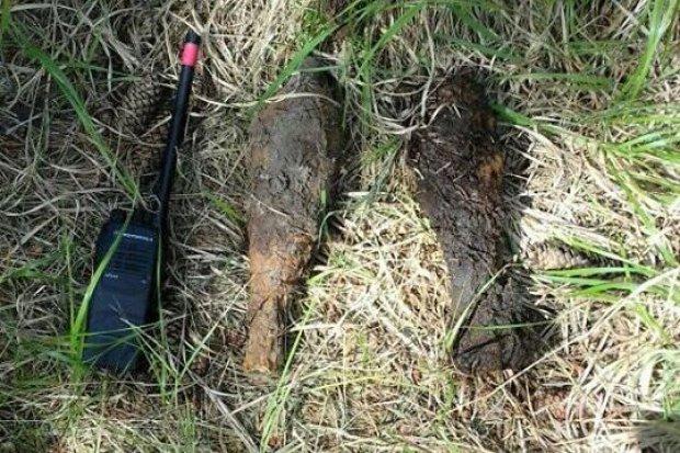 Radzieckie granaty w lesie