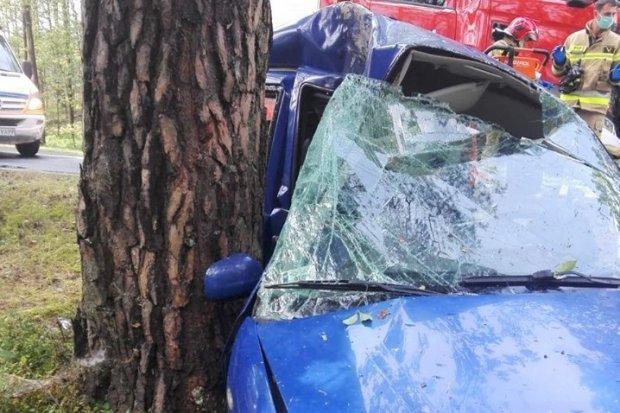 Wjechał w drzewo. Strażak poza służbą uratował ciężko rannego kierowcę