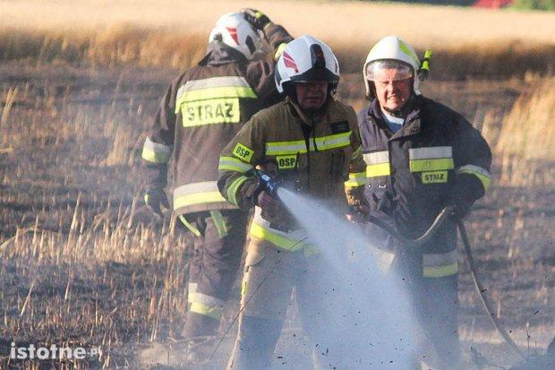 Pożary na polach koło Tomaszowa Bolesławieckiego i Chościszowic