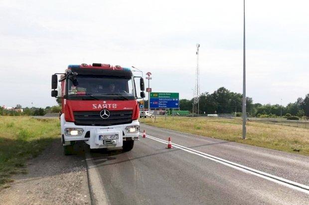 Strażacy zabezpieczali drogę wojewódzką 297