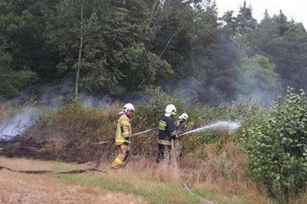 Pożar w Gromadce
