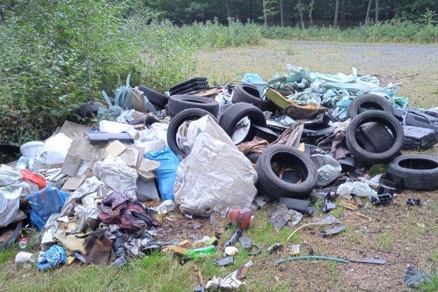 Bardzo surowe kary dla śmiecących! Nawet 25 lat więzienia za przestępstwo środowiskowe