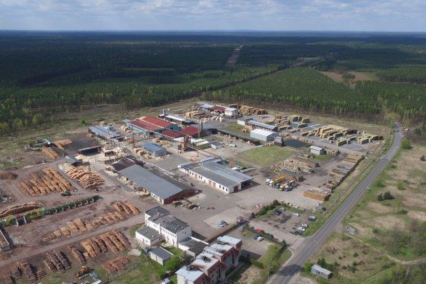 Firma Forest Style z Przejęsławia poszukuje pracowników produkcji