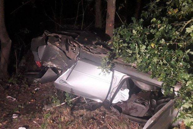 Audi uderzyło w drzewo. Dwaj uczestnicy zdarzenia pijani, pasażer ciężko ranny