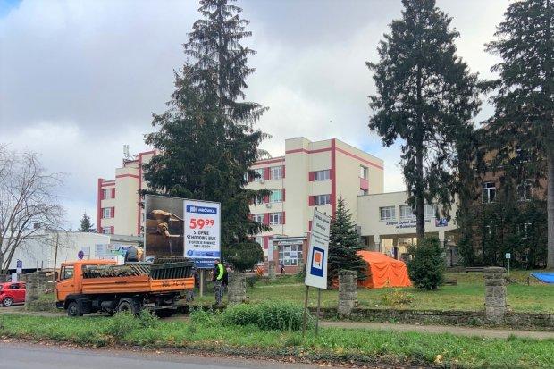 Odnowią park i ogrodzenie przy szpitalu powiatowym w Bolesławcu