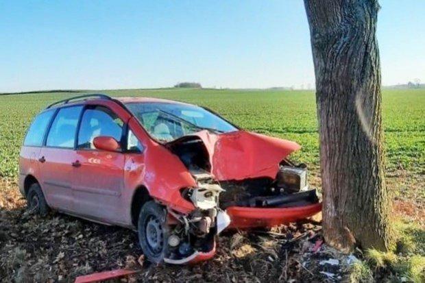 Zderzenie auta z drzewem na wyjeździe z Kraśnika Dolnego w kierunku Gromadki