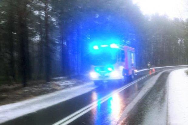 Akcja straży pożarnej na drodze Gromadka–Krzyżowa
