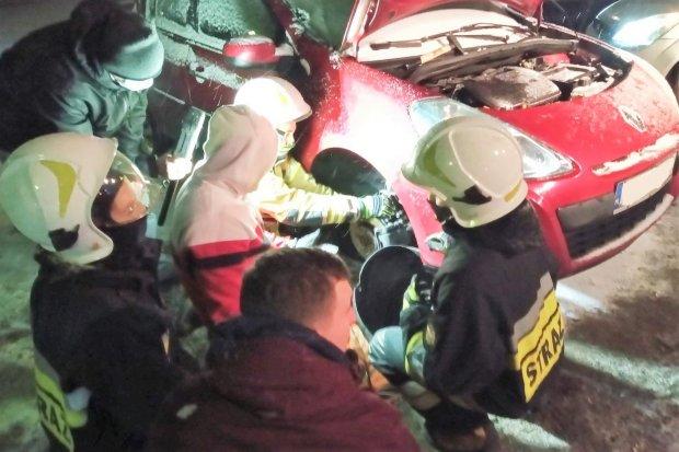 Strażacy z Trzebienia uratowali kotkę, która… utknęła w komorze silnika samochodu