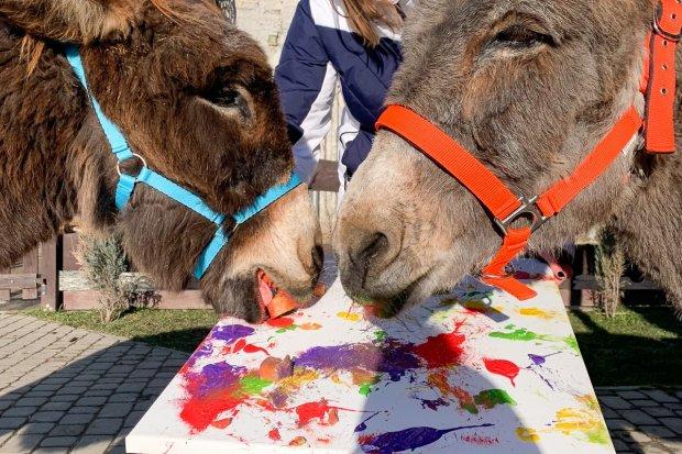 Kucyki malują obrazy! Trwa akcja mająca ocalić największy azyl dla koni w Europie