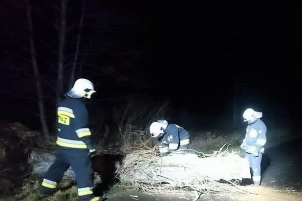 Nocna akcja strażaków na drodze między Gromadką a Wierzbową