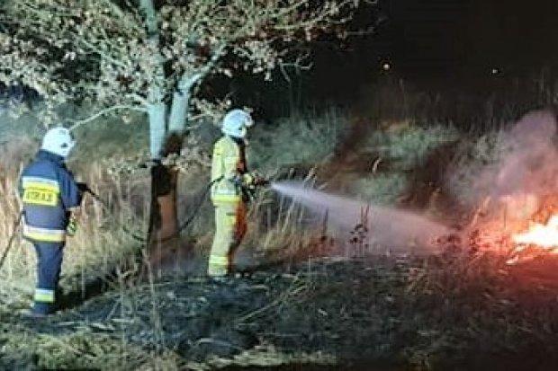 Wieczorna akcja straży pożarnej w Parkoszowie