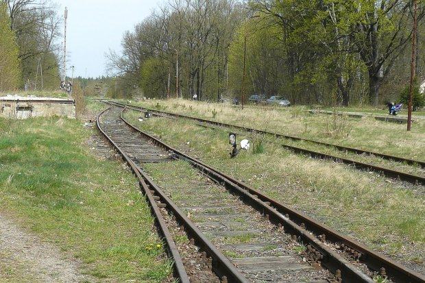 Pociągiem z Zebrzydowej do Żagania. Jednak odbudują tę linię kolejową