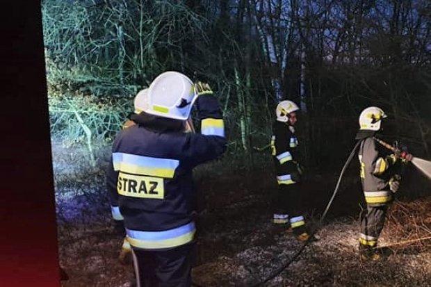 Wieczorna akcja straży pożarnej w Parkoszowie. Wiemy, co się stało