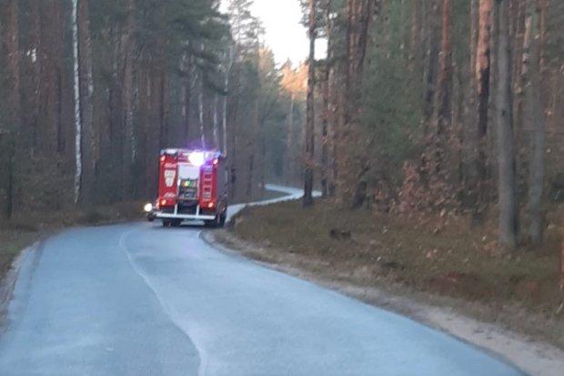 Akcja straży pożarnej między Osłą a Gromadką