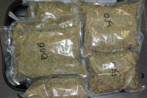 Wpadły kobiety, które przewoziły 1,3 KILOGRAMA marihuany