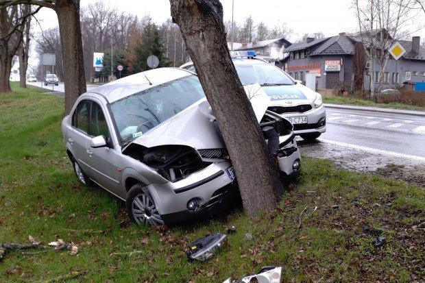 Auto uderzyło w drzewo, jedna osoba poszkodowana