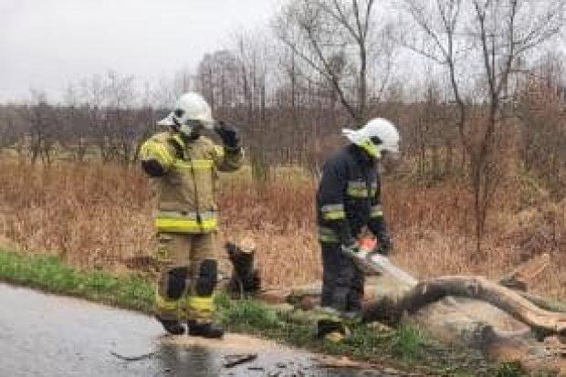 Akcja straży pożarnej między Gromadką a Modłą