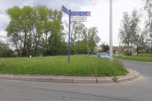"""Czytelnik o """"zarośniętym"""" Bolesławcu: """"Wszędzie trawa po kolana"""""""