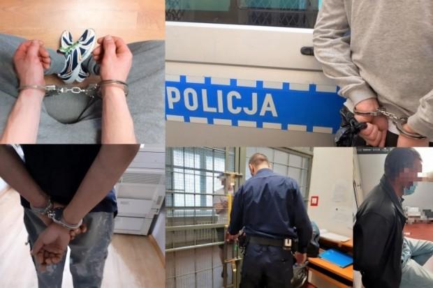 6 poszukiwanych przestępców w rękach bolesławieckiej policji