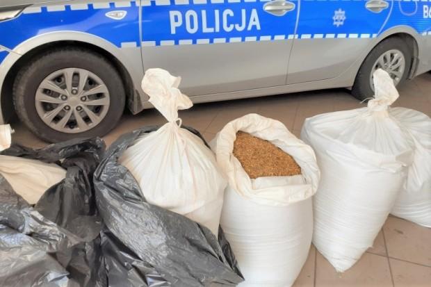 Policjanci z Kruszyna przechwycili blisko 100 kg nielegalnego tytoniu