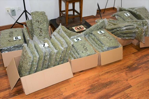 Przewoził tirem... ponad 58 KILOGRAMÓW marihuany. 46-latek aresztowany