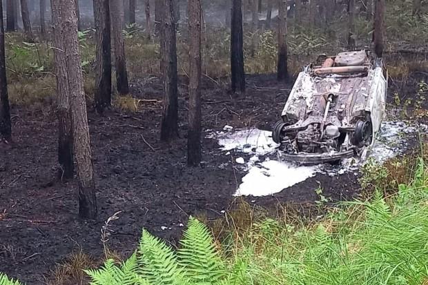 Duży pożar lasu. Przyczyną podpalone auto?