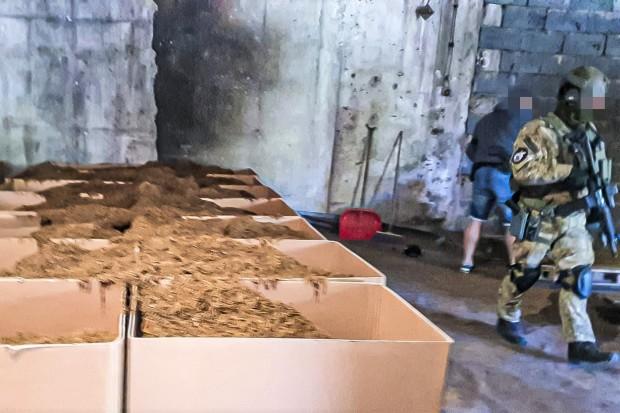 Krajalnia nielegalnego tytoniu zlikwidowana. Dzienna produkcja: blisko 5 ton!
