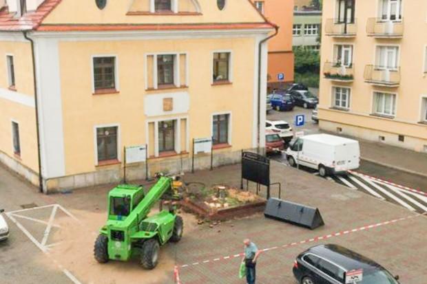 Wycięto drzewo w centrum, a urzędnicy nie odpowiadają, dlaczego to zrobiono