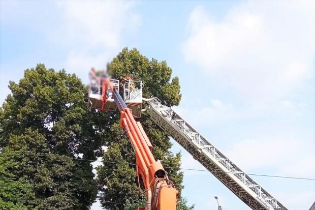 Utknęli na wysokości ok. 10 m, w… koszu podnośnika. Interweniowali strażacy