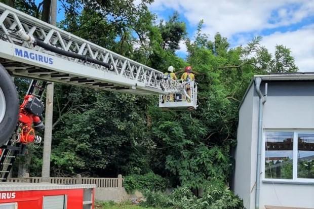 Strażacy nadal usuwają… skutki nawałnic
