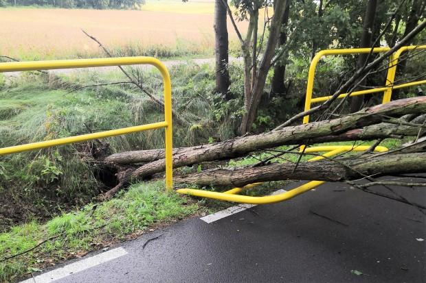 Burza nad powiatem. Drzewo zdemolowało barierkę