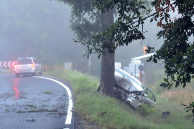 Kolizja w Parowej. Ford wypadł z drogi, uderzył w drzewo. 19-latka ranna