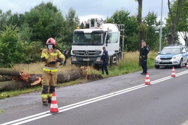 Samochód ciężarowy zahaczył i złamał drzewo na wyjeździe z Bolesławca do Łazisk