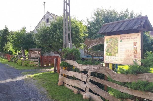 Borówki, Wioska Darów Lasu, zmieni się na lepsze, gorąco zaprasza turystów!