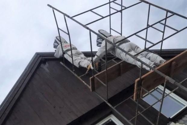 Szerszenie dawały się we znaki mieszkańcom Żeliszowa. Interweniowali strażacy