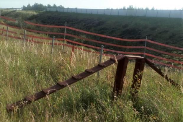 Dewastują ogrodzenia przy A4. A one mają chronić przed afrykańskim pomorem świń