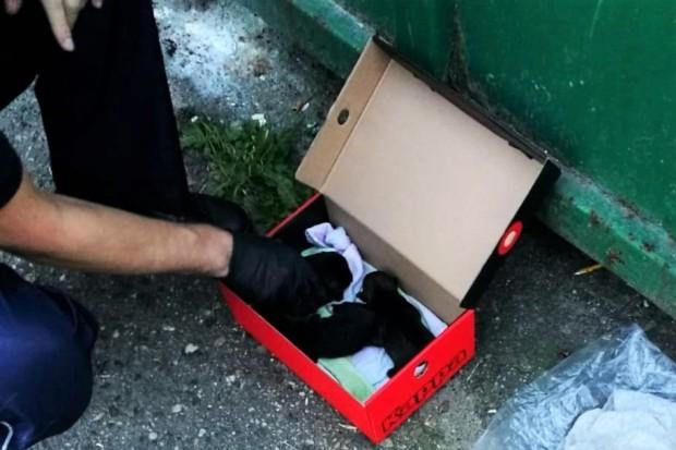 Wyrzucił sześcioro szczeniąt do śmieci, troje nie przeżyło. Policja szuka zwyrodnialca