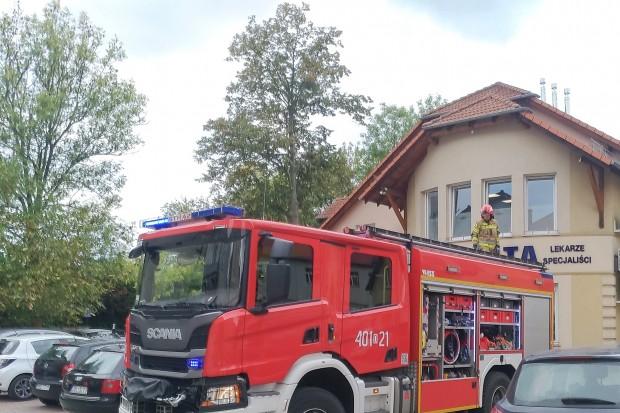 Strażacy kontra osy. Akcja mundurowych przy Grunwaldzkiej w Bolesławcu