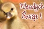 Poniedziałek Wielkanocny w Naszym Zoo!