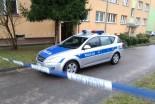 Brutalne podwójne zabójstwo w Bolesławcu: mężczyzn…