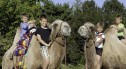 Nasze Zoo na Jakubach!