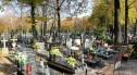Wielkie sprzątanie na legnickich nekropoliach