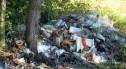 Nielegalne wysypisko śmieci w Chobieni. Koszt jego likwidacji to prawie 5 tys. zł