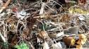 Miał się zajmować recyklingiem. Stworzył dzikie wysypisko i skaził glebę w dolinie Bobru