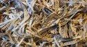 Biurowe vs. przemysłowe – jakie niszczarki dokumentów sprawdzą się w mojej firmie?
