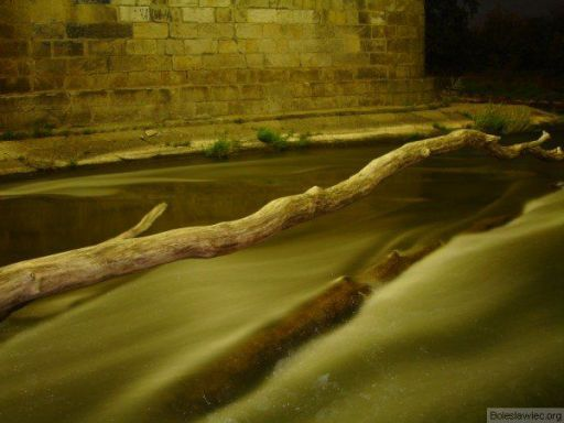 Kij pod wiaduktem