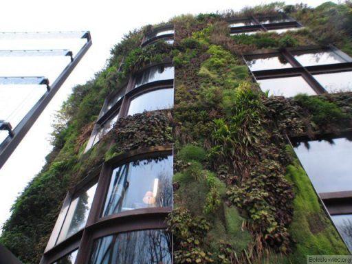 Paryż: Dom z roślinną elewacją
