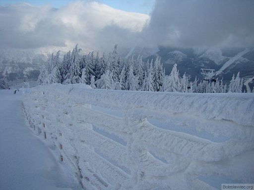 Śniegowy płot