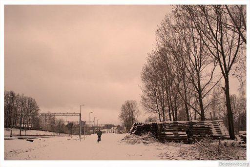 Spacer zimowy z psem